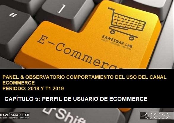 Perfil de usuarios ecommerce